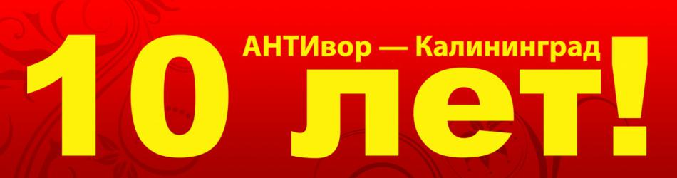 Офису компании АНТИвор – Калининград исполняется 10 лет!