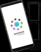 Программное обеспечение Magnum Connect